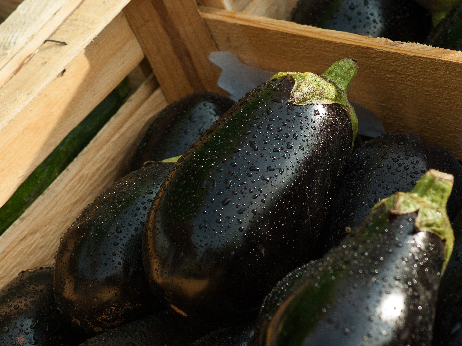 eggplants with water spots in a wooden crate